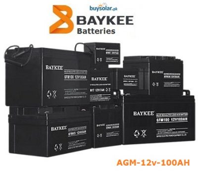 Baykee AGM 12V 100AH Battery