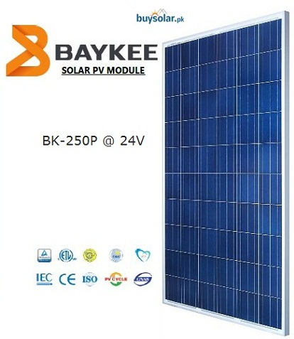 Baykee 250Wp Poly-Crystalline